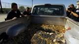 Watch Border Wars Season  - Truckload of Ammo Online