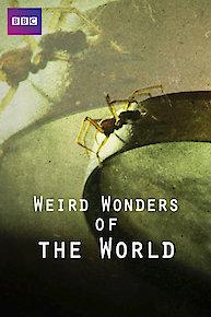 Weird Wonders