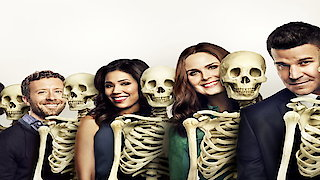 Watch Bones Season 11 Episode 10 - The Doom in the Boom Online