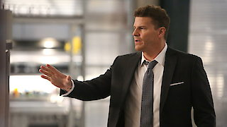 Watch Bones Season 12 Episode 11 - The Day in the Life Online