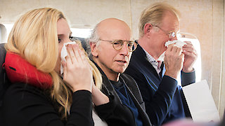 Watch Curb Your Enthusiasm Season 9 Episode 6 - The Accidental Text ...Online