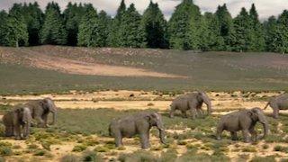 Watch Prehistoric Season 1 Episode 6 - Denver Online