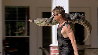 Watch Billy the Exterminator Season 6 Episode 15 - Gator Pool Party Online