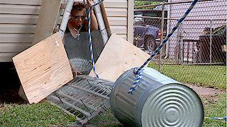 Watch Billy the Exterminator Season 6 Episode 16 - Sink or Swim Online