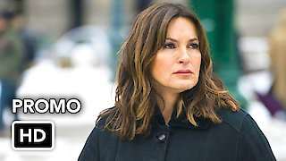 Watch Law & Order: Special Victims Unit Season 19 Episode 13 - The Undiscovered Cou... Online