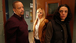 Watch Law & Order: Special Victims Unit Season 17 Episode 12 - Forty-One Witnesses Online