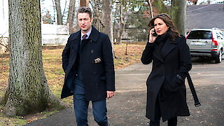 Watch Law & Order: Special Victims Unit Season 18 Episode 7 - Next Chapter Online