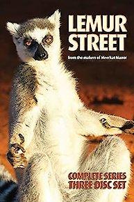 Lemur Kingdom
