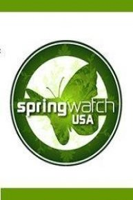 Spring Watch USA