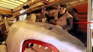 Watch Shark Week Season 2015 Episode 15 - MythBusters vs. Jaws Online