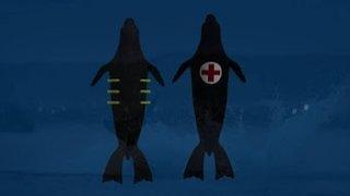Watch Shark Week Season 2016 Episode 9 - Air Jaws: Night Stal... Online