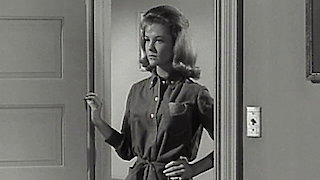 Watch The Donna Reed Show Season 5 Episode 30 - Boys & Girls Online