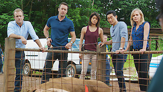 Watch Hawaii Five-0 Season 6 Episode 9 - Hana Keaka (Charade) Online