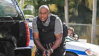 Watch Hawaii Five-0 Season 6 Episode 17 - Waiwai (Assets) Online
