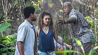 Watch Hawaii Five-0 Season 6 Episode 19 - Malama Ka Po'e (Care... Online