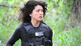 Watch Hawaii Five-0 Season 6 Episode 21 - Ka Pono Ku'oko'a (Th... Online