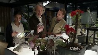 Watch Terra Nova Season 1 Episode 7 - Proof Online