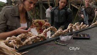 Watch Terra Nova Season 1 Episode 8 - Vs. Online