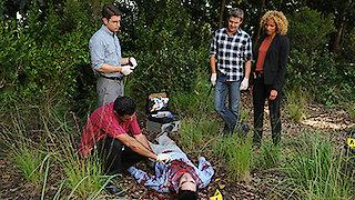 Watch The Glades Season 4 Episode 11 - Civil War Online