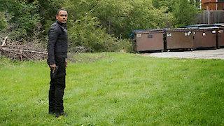 Watch Covert Affairs Season 5 Episode 16 - Gold Soundz Online