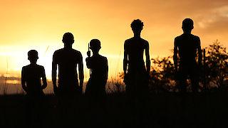 Watch NOVA Season 44 Episode 3 - Great Human Odyssey Online