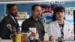 Watch NCIS Season 15 Episode 14 - Keep Your Friends Cl...Online