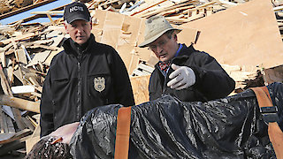 Watch NCIS Season 13 Episode 13 - Deja vu Online