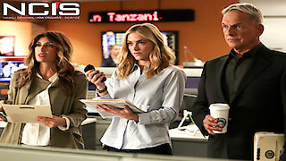 Watch NCIS Season 14 Episode 9 - Pay to Play Online