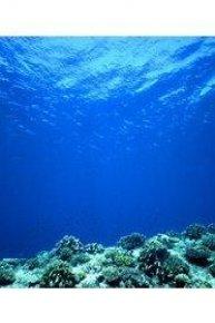 Oceans Blue