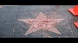 Watch CBS Evening News Season  - Man destroys Donald Trump's Hollywood star with sledgehammer Online