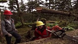 Watch Sarah Palin's Alaska Season 1 Episode 7 - Logging Online