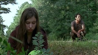 Watch The Walking Dead Season 6 Episode 7 - Heads Up Online