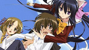 Watch Omamori Himari Season 1 Episode 8 - Curiosity killed the... Online