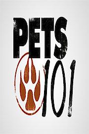 Pets 101
