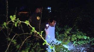 Watch Cops Season 28 Episode 20 - Two in the Bush Online