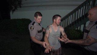 Watch Cops Season 29 Episode 17 - Two Doors Down Online