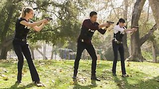 Watch Criminal Minds Season 13 Episode 18 - The Dance of Love Online