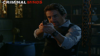 Watch Criminal Minds Season 12 Episode 9 - Profiling 202 Online