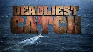Watch Deadliest Catch Season 12 Episode 11 - Proving Grounds Online