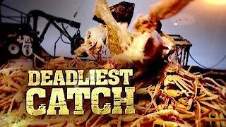 Watch Deadliest Catch Season 12 Episode 14 - Fire at Sea (1) Online