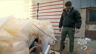 MythBusters Season 12 Episode 10