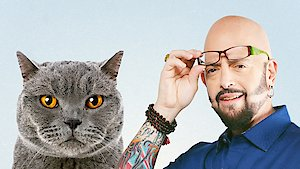 Watch My Cat From Hell Season 8 Episode 2 - Katrina Storms In Online
