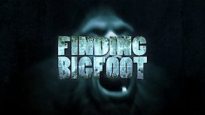 Watch Finding Bigfoot Season 11 Episode 4 - Return to Four Corne... Online