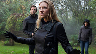 Watch Fringe Season 5 Episode 9 - Black Blotter Online