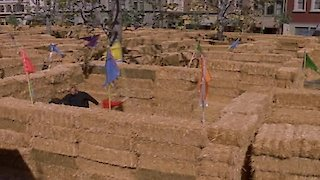 Watch Gilmore Girls Season 7 Episode 18 - Hay Bale Maze Online