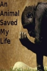 An Animal Saved My Life