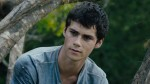 Maze Runner Accident Seriously Injures Star