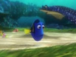 New Movies June 17: Dory and the Rock