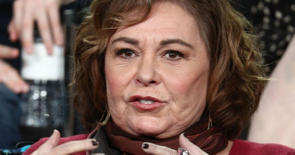 Roseanne Barr Plans to Interview Herself