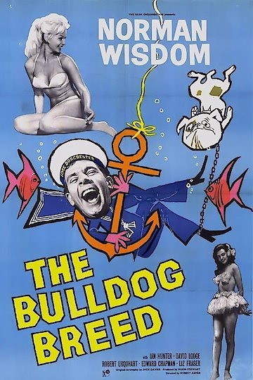 The Bulldog Breed